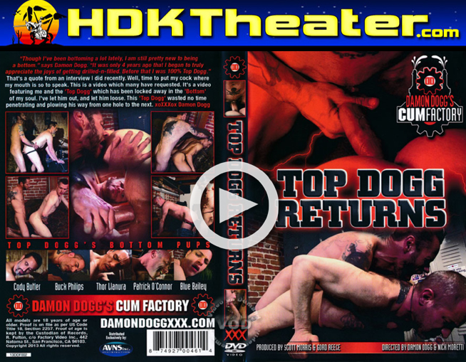 Damon Doggs: TOP DOG RETURNS